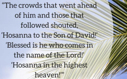 A Wonderful Way to Celebrate Palm Sunday